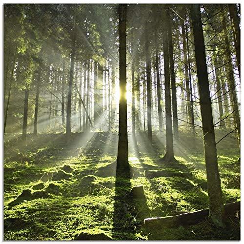 Artland Glasbilder Wandbild Glas Bild einteilig 50x50 cm Quadratisch Natur Wald Landschaft Sonne Bäume Moos Frühling Landhaus T5SV