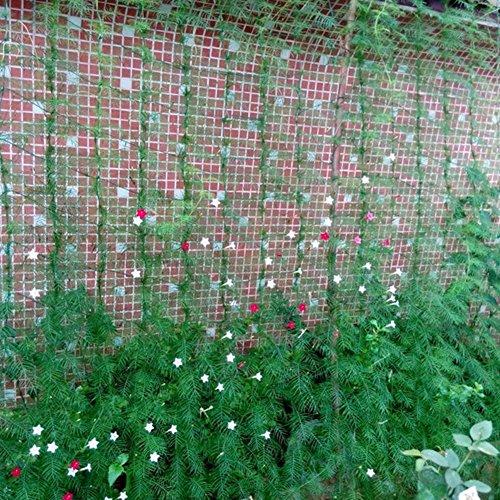 quanjucheer Plants Climbing Net,Garden Nylon Netting Trellis Net Vegetables Bean Grow Supporting Green