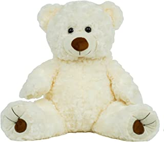BEAREGARDS.COM Personalized Recordable Message 15 Inch Talking Teddy Bear w/ 30 Seconds of Recording Time.
