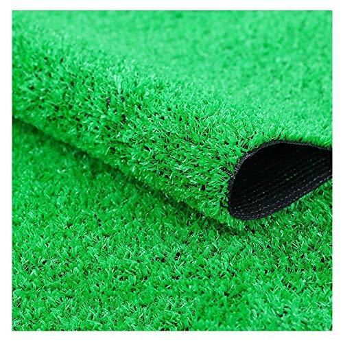 S2F5 Kunstrasen 10mm Hochflor, gefälschter Rasenflor, Haustier Hund synthetische Strohmatte, Teppich- Fußmatte Gummistützablaufloch (Size : 2x1m)