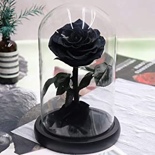 AMYMGLL Red Rose Gift, LED Rose Flower in Glass Dome,Artificial Flowers Last Forever,Preserved Rose,Forever Rose Gift Mother, Valentine`s Day,Wedding, Anniversary,Girlfriend,Black