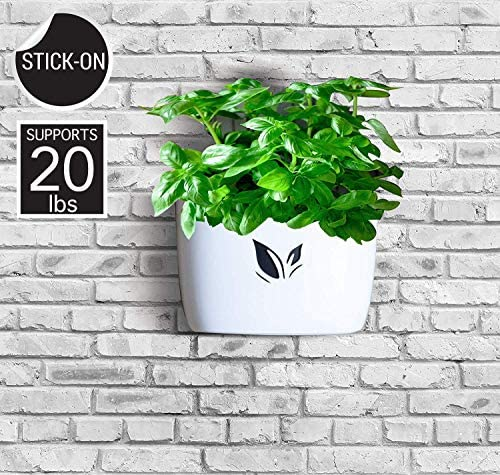 Cestash Self Watering Pots for Indoor Plants Self Watering Planter Pot for Herbs Non Hanging product image