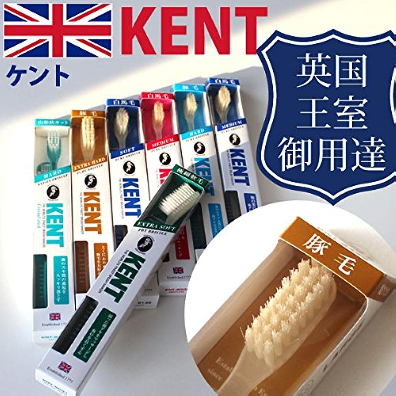 ネックレスウサギ獣ケント KENT 豚毛 コンパクト 歯ブラシKNT-9233/9833 6本入り 他の天然毛の歯ブラシに比べて細かく磨 かため