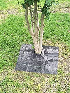 Best square tree rings Reviews