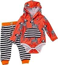 Baby Girl Boys Cartoon Animal Zebra Hoodie Romper with Kangaroo Pocket Top Stripe Pants Fall Outfit Set
