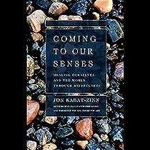 coming to our senses kabat zinn jon