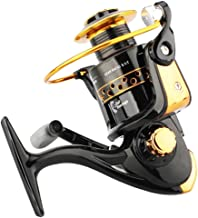 Vivoice Fishing Reel - Smooth Spinning Reels - 12 Ball Bearings-Brass Gears,Left Right Interchangeable Collapsible Handle (2000)