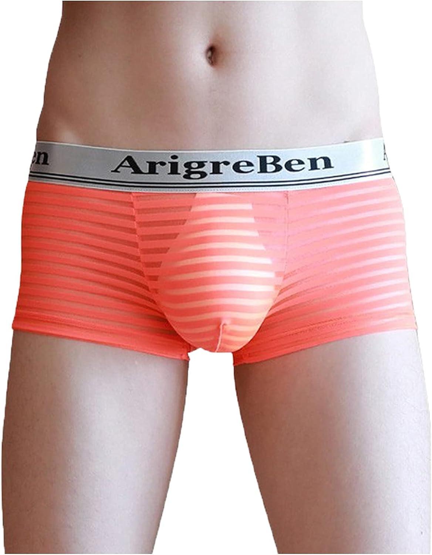 Men's Underwear Boxer Briefsee-Through Transparent Briefs Underpants Knickers Sexy Boxers Shorts