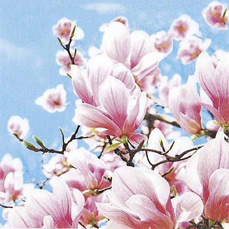 20 Servietten Blooming Magnolia – Blühende Magnolien/Blumen 33x33cm