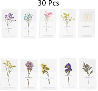 MIAO JIN 30 Pcs Dried Flowers Greeting Cards Thank You Cards Handmade Craft Note Card for Party Invitation Thanks Gifts Card (10 Patterns)