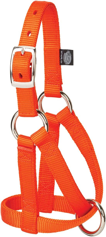Nylon Goat Ranking integrated 1st place Halter 35-8150-09 Genuine Free Shipping Orange Model: