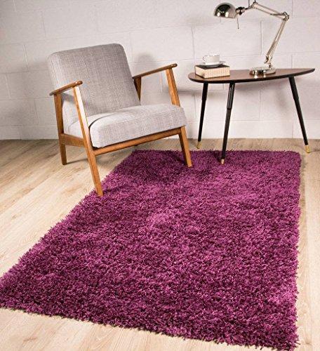The Rug House Tapis de Salon épais agréable Doux Ontario Prune Violet, Nettoyage Facile 80x150cm (2