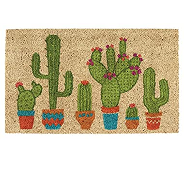 DII Indoor/Outdoor Natural Coir Easy Clean Rubber Non Slip Backing Entry Way Doormat for Patio, Front Door, All Weather Exterior Doors, 18 x 30 - Cactus