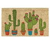 DII Fibra de Coco Natural, 18 x 30 cm Entrada Entrada Entrada al Aire Libre Puerta Mat con Respaldo Antideslizante Cactus