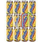 Yoo-Hoo Chocolate Drink, 11 Oz Can (Pack of 12) With Color And White Straws