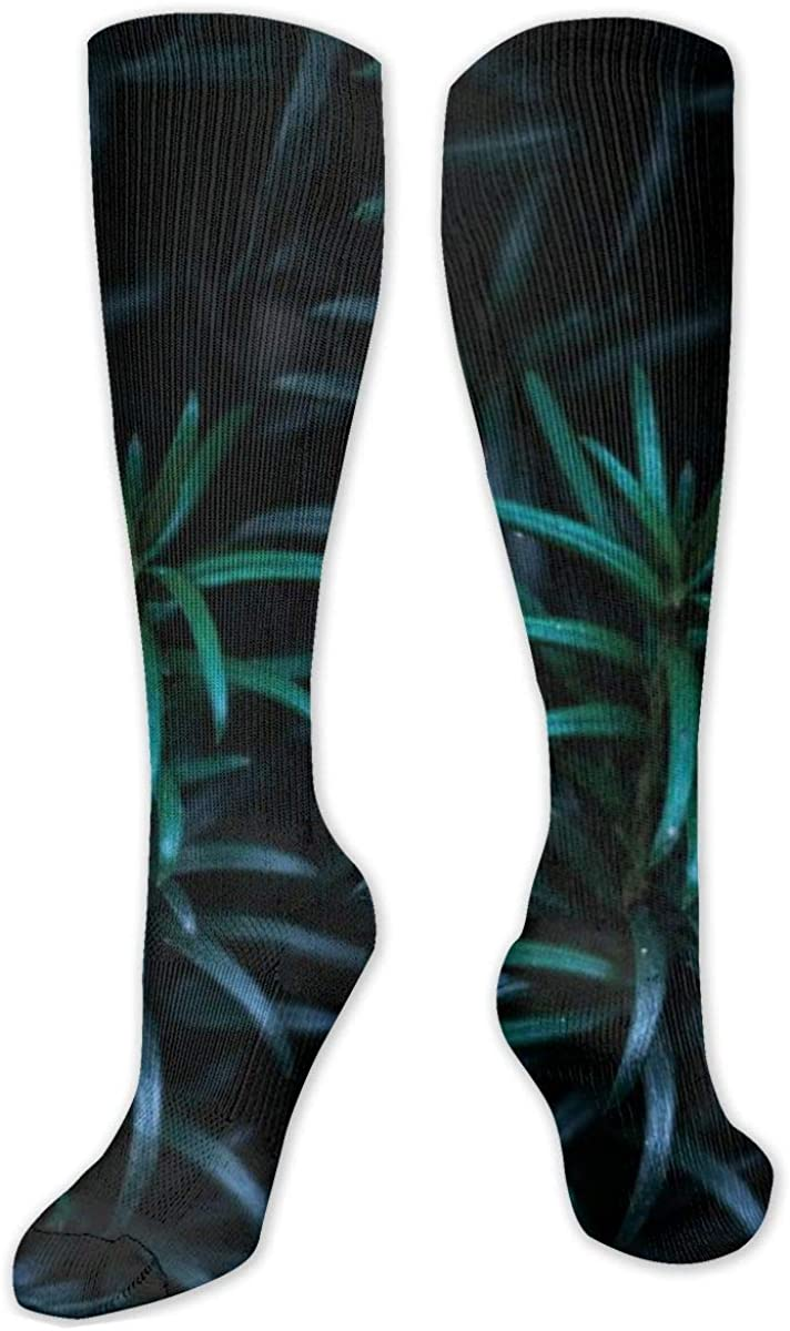 Green Linear Leaf Plants Knee High Socks Leg Warmer Dresses Long Boot Stockings For Womens Cosplay Daily Wear