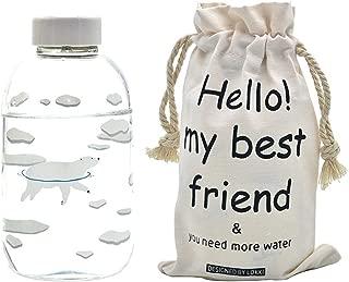 Fecihor Glass Water Bottle with Polar Bear Print -Environmental Borosilicate Glass Beverage Bottles with Lids for Juicing or Beverage Storage-600ml/21.2oz - Set of 1