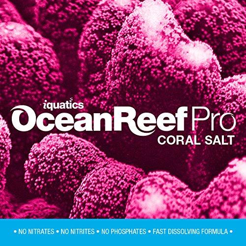 profesional ranking iQuatics Ocean Reef Pro Coral – Sal de acuario (10 kg) – Recarga elección