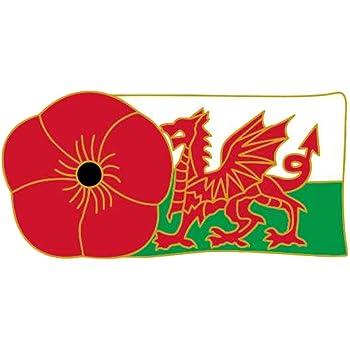 147 Wales Flag Lapel Badge Pin