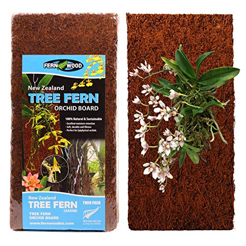 Fernwood Tree Fern Orchid Mounting Board- Soft, Durable, and Fibrous | Natural and Sustainable | for Orchids and Other Epiphytes | 2 Pack (Regular 12x6x1)