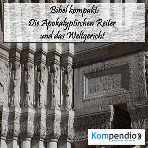 Die Apokalyptischen Reiter und das Weltgericht audiobook cover art