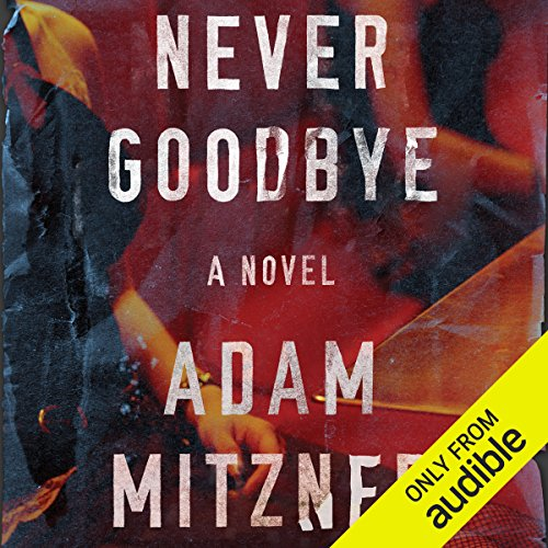 Never Goodbye audiobook cover art