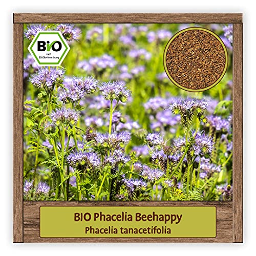 BIO Samen Phacelia Blumensamen Saatgut bienenfreundliche Sommerblume Bienenweide & Gründüngung