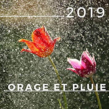 Orage et Pluie 2019: Sons de la nature pour la relaxation et méditation