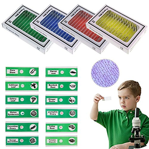 QIXINSTAR 48pcs Prepared Plastic Microscope Slides Biological Specimen with 4 Boxes for Children Student Enlighten Education