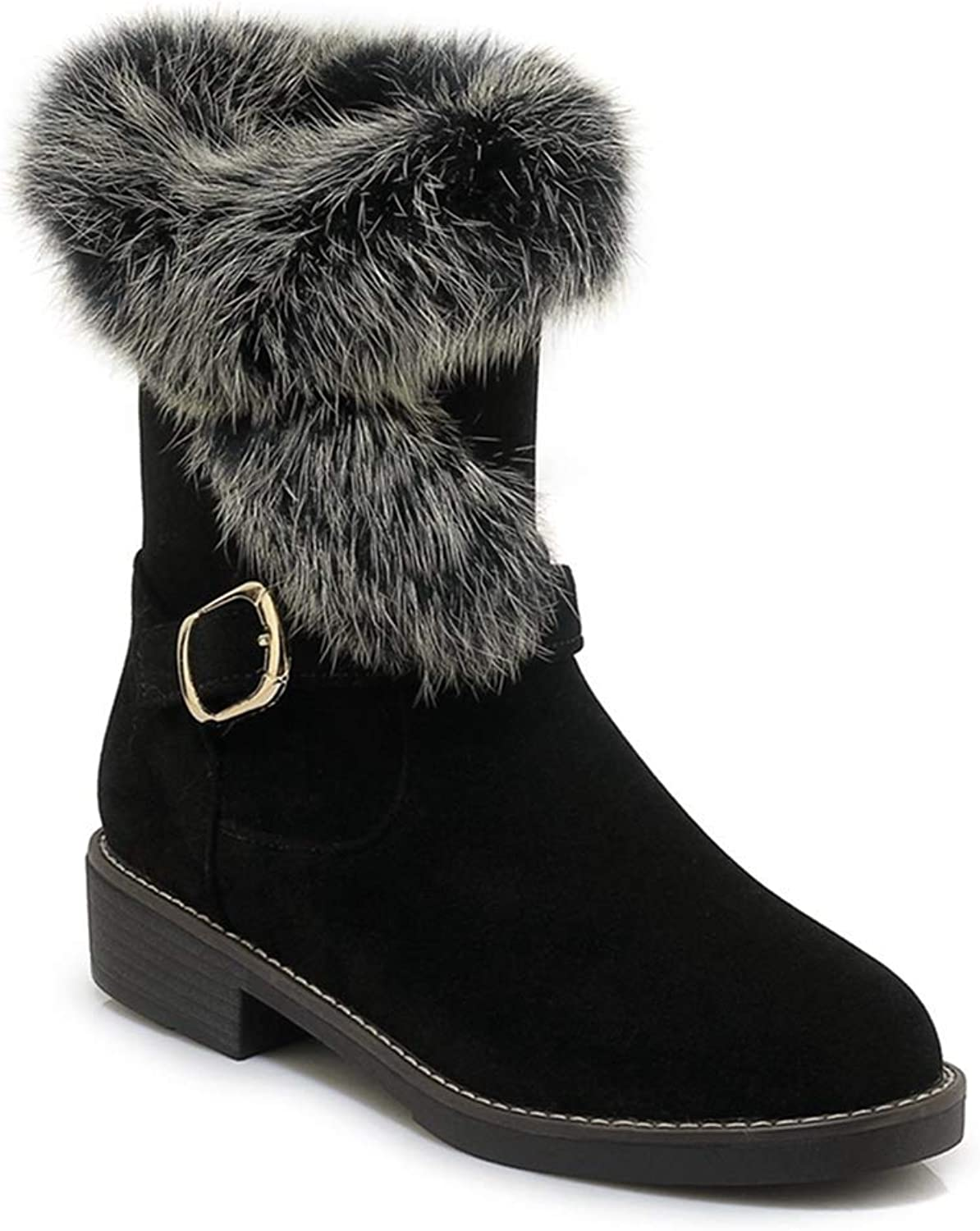 Fashion shoesbox Women's Winter Warm Fur Snow Ankle Booties Waterproof Suede Short Boots Low Heel Buckle Snow Boots
