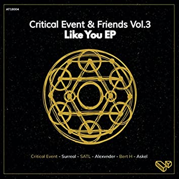 Critical Event & Friends Vol.3 - Like You EP