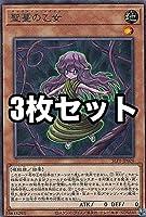 【3枚セット】遊戯王 SLT1-JP028 聖蔓の乙女 (日本語版 レア) - セレクション - SELECTION 10