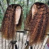Brennas Hair Highlight Curly Human Hair Wig 13x4x1 T Part Lace Front Human Hair Wigs for Black Women Brazilian Virgin Hair Pre Plucked Glueless Wigs with Baby Hair T Part Lace Wig 150% Density 20Inch
