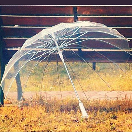 &Regenschirm falten Transparenter Regenschirm-langer Griff-transparenter Regenschirm-automatischer Werbungs-Regenschirm-kreativer Regenschirm Regenschirm mit 16 Knochen für Männer und Frauen