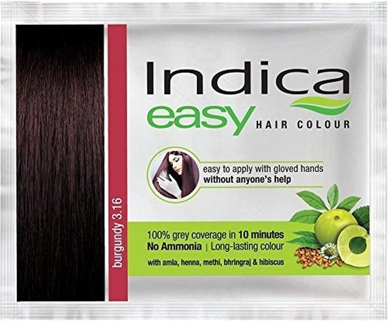 目的供給待つNexxa 6Pc Indica Easy10 Minutes Herbal Hair Color Shampoo Base Burgundy Herbs