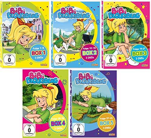 Bibi Blocksberg - DVD Sammelbox 1 - 5 im Set - Deutsche Originalware [5 DVDs]