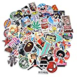 Stickers, Breezypals Vinyl Laptop Stickers for Car Motorcycle Bicycle Luggage Graffiti Patches Skateboard Wall Decals (100 Pcs Random)