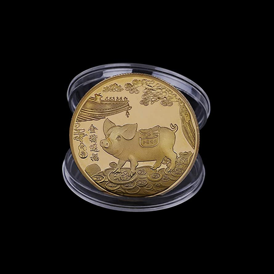 LIGONG 5PCS 2019 Pig Year Commemorative Coin Gilding Present Souvenir New Year Craft Gift Lucky Zodiac Gifts, Blessing Souvenir