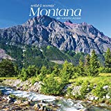 Montana Wild & Scenic 2021 12 x 12 Inch Monthly Square Wall Calendar, USA United States of America Rocky Mountains State Nature
