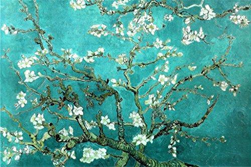 Van Gogh Póster de San Ramy, diseño de almendras, multicolor