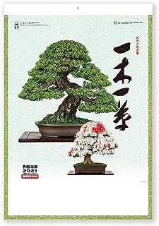 新日本カレンダー 2021年 カレンダー 壁掛け 一木一草 NK91