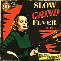 Slow Grind Fever Vol 5 [12 inch Analog]