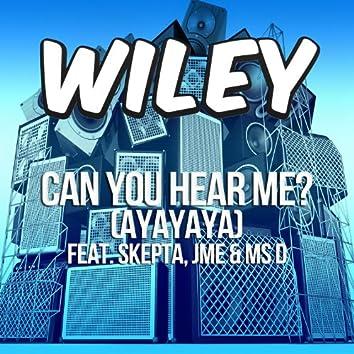 Can You Hear Me? (ft. Skepta, JME & Ms D)