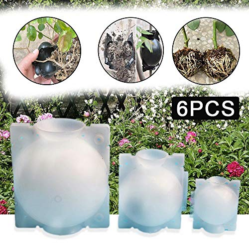 JRYⓇ 9PCS Plant Rooting Device, wiederverwendbarer Hochdruck-Ausbreitungsball Plant Rooting Ball für die Gartenpfropfung Rooting Growing Breeding