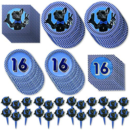 Havercamp Boys 16th Birthday Party, Deluxe Party Pack for 16 Guests; 2 Plates, 2 Napkins and Party/Food Picks.