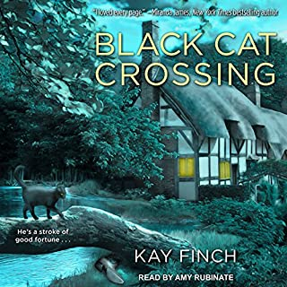 Black Cat Crossing audiobook cover art