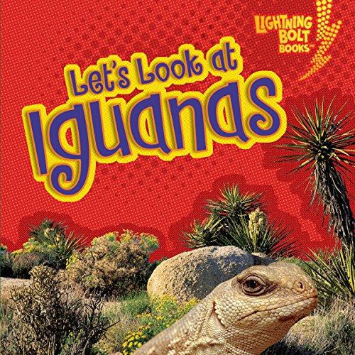 Let's Look at Iguanas copertina