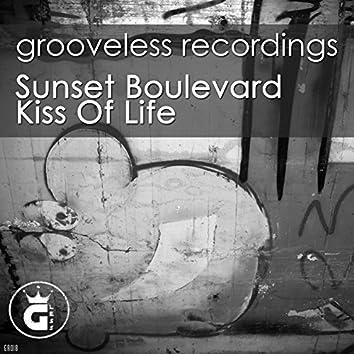 Kiss of Life (D-Soriani Soulful Remix)
