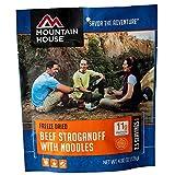 Mountain House Beef Stroganoff - 2 Servings
