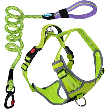 ThinkPet Escape-Proof Comfortable Harness No Pull Breathable Reflective Padded Dog Safety Vest Adjustable Harness